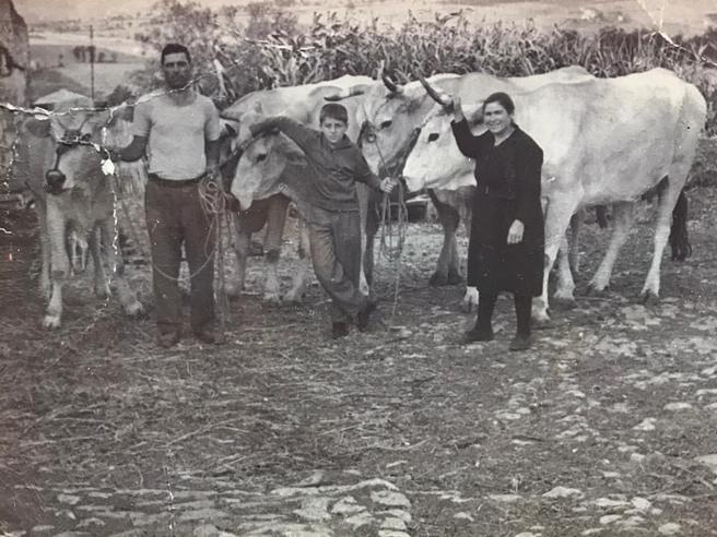 Antonio Di Pietro nelle foto da bambino in campagna. Dove è tornato: «Produco olio e vino a Montenero»