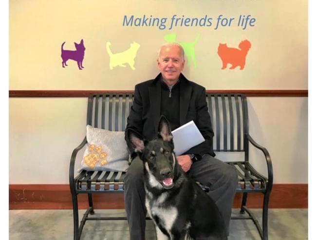 Joe Biden si frattura il piede giocando con il cane
