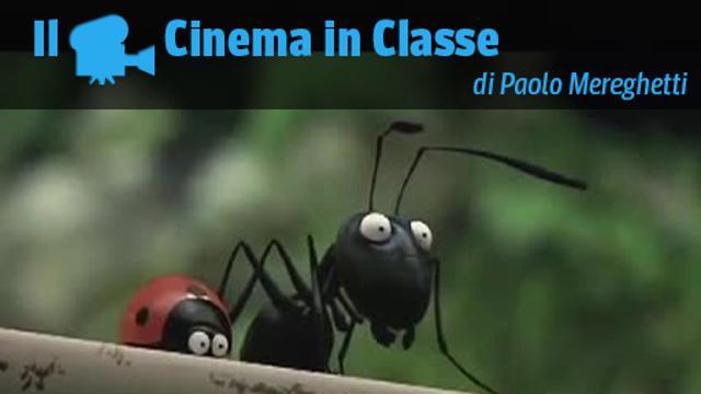 La coccinella le formiche e la forza della solidarietà corriere tv
