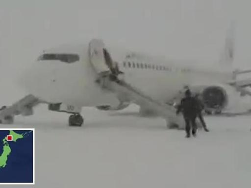 Giappone fumo in cabina passeggeri dell 39 aereo in fuga for Cane nella cabina dell aereo