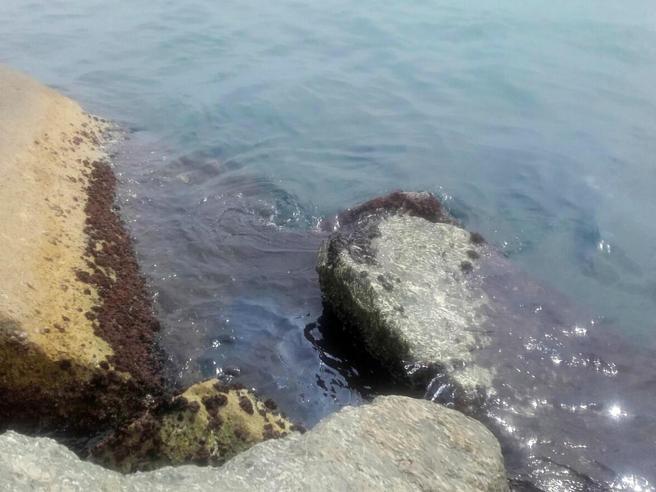 A Genova è «psicosi chiazze» La pioggia potrebbe spingere il petrolio in mare La diretta