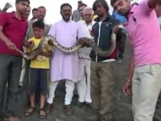 India, il selfie con il pitone finisce male: il serpente azzanna il malcapitato