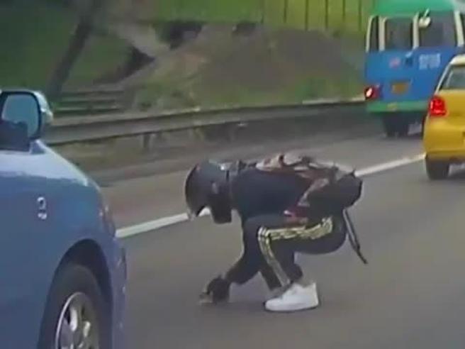 Motociclista rischia la vita per salvare un gattino finito in mezzo all'autostrada