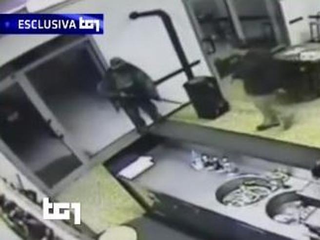 Igor, l'assalto in mimetica e fucile: così  ha ucciso il barista Il video|Le immagini