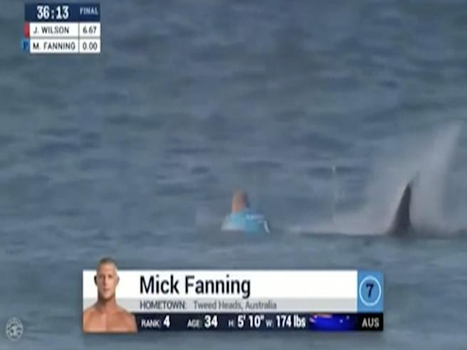 Sudafrica, incontro ravvicinato tra il campione di surf e lo squalo: è la seconda volta in due anni