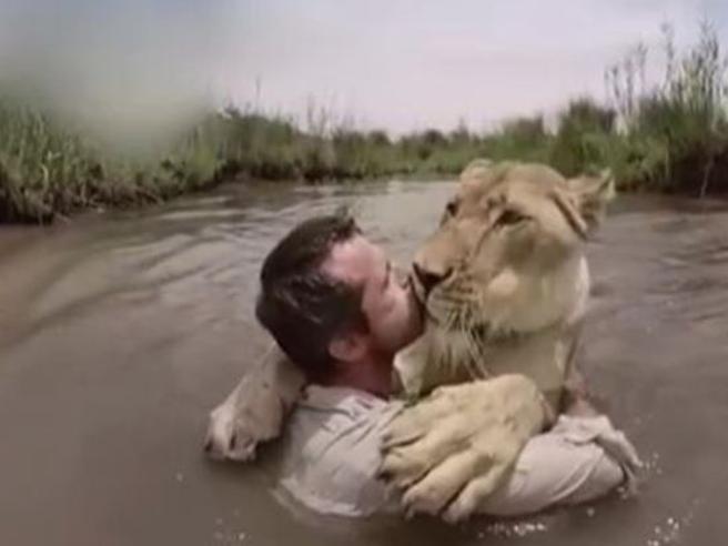 Lo zoologo e il bagno nel fiume con la leonessa, le spettacolari immagini girate con la GoPro