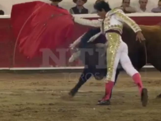 Il torero incornato e lanciato per aria durante il festival in Messico video