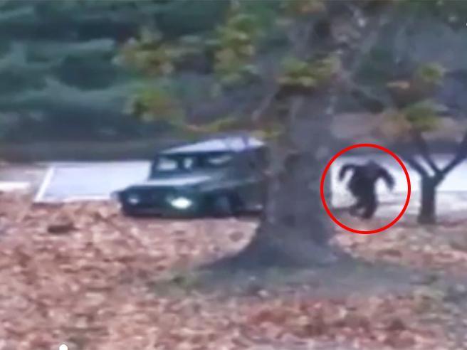 Corea del Nord, il video dei soldati che sparano contro il disertore.  Usa e Seul accusano: «Violato armistizio»