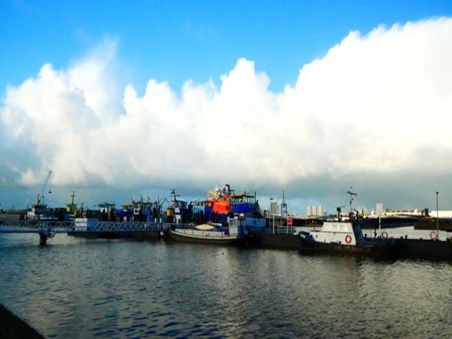 Gli italiani usano gli albanesi per fare passare la droga dal porto di Rotterdam|Video