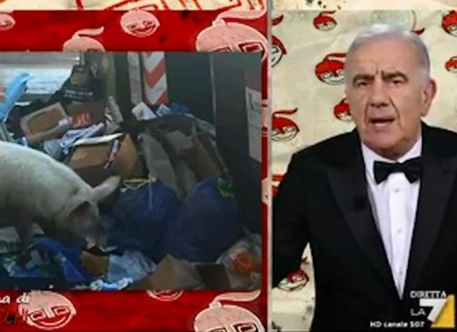 Gene Gnocchi: «Il maiale tra l'immondizia a Roma? Si chiama Claretta Petacci». E esplode la polemica