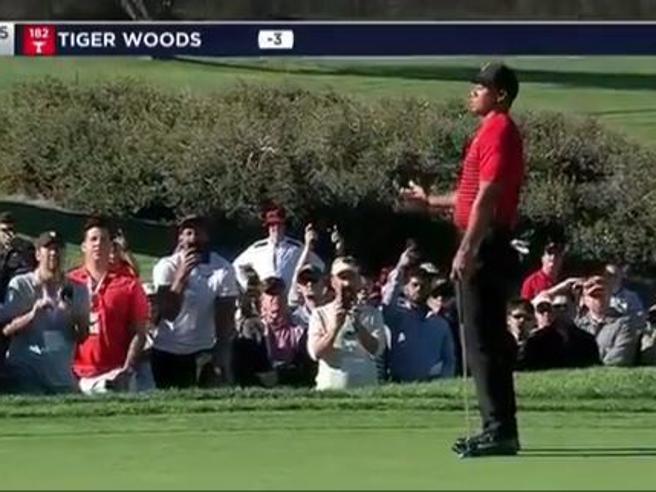 «Vai in buca!»: l'urlo del tifoso che distrae Tiger Woods. E lui fallisce il colpo