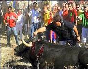Il toro Afligdo morto l'anno scorso durante la corrida