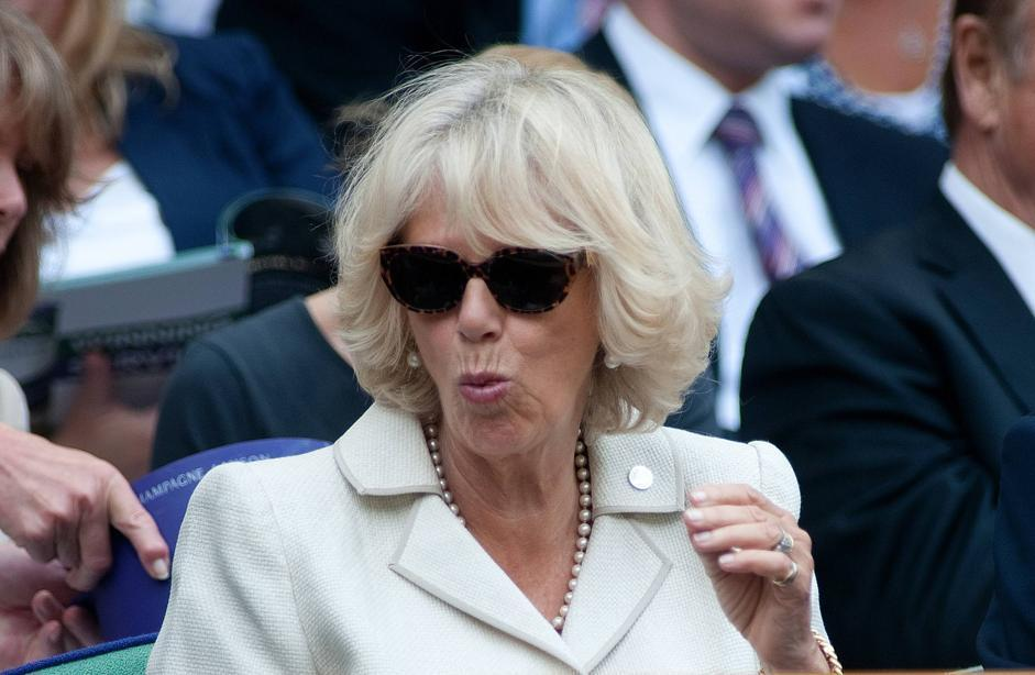 Camilla e il chewing gum la duchessa diventa un coniglio for Il gomitolo di camilla