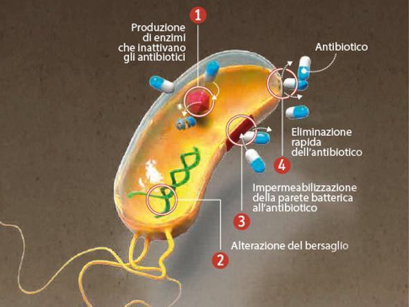 meccanismo AMR