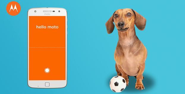 Momo app hook up
