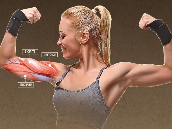 acquista per il più recente goditi la spedizione in omaggio data di rilascio: Esercizi per i muscoli di braccia e spalle: come tonificarli ...
