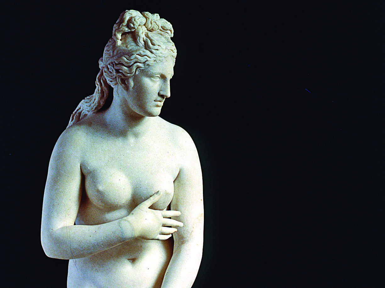 Un dettaglio della Venere Capitolina 6fd13f05cd55