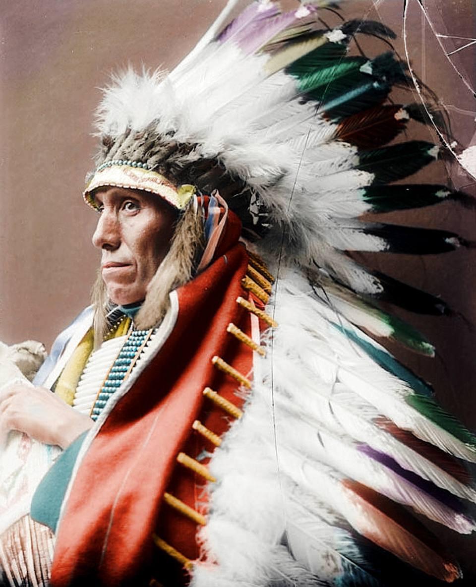 7 Amazing Colours For A Statement Wall With Wow: I Nativi Americani A Colori: I Ritratti Degli Indiani Di