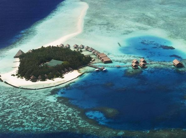 siti di incontri gratuiti Fiji
