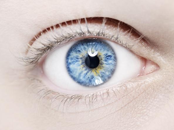 8b33bf0b938f 10 cose che il tuo oculista sa e tu no  i falsi miti sulla vista ...