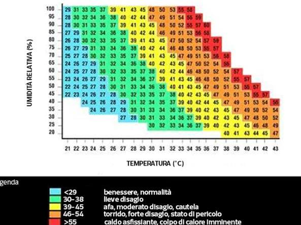 Temperatura Percepita Cos 232 Lo Avete Chiesto A Google Vi