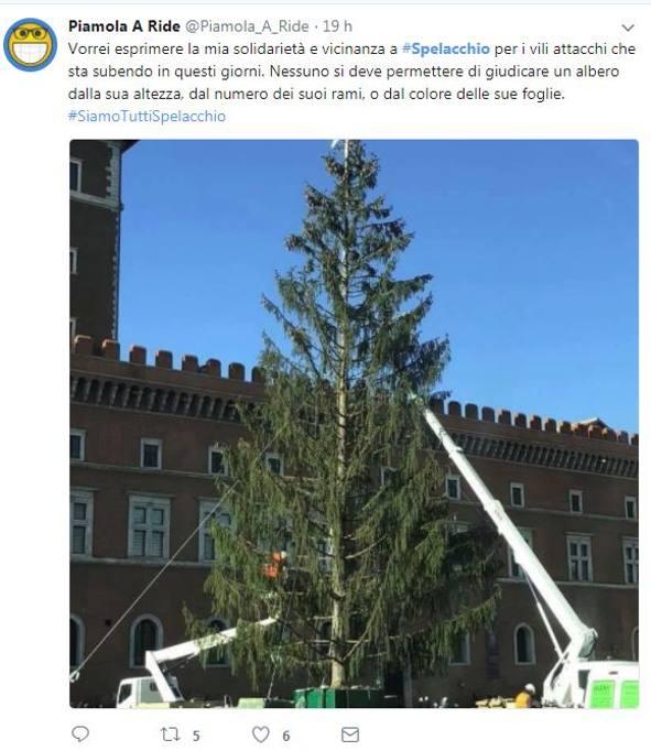 albero natale 2018 roma Roma: «Spelacchio», l'albero di Natale di piazza Venezia scatena i  albero natale 2018 roma