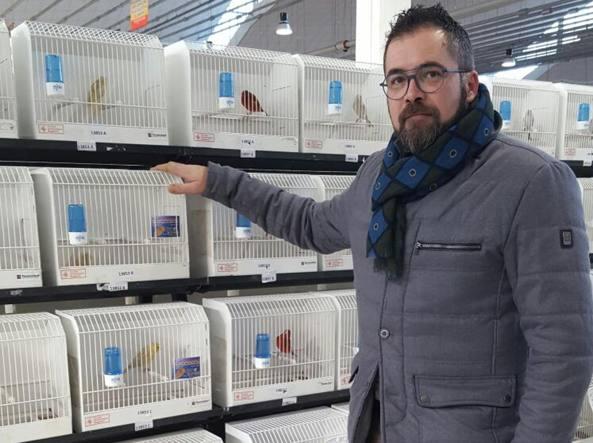 Calendario Mostre Ornitologiche 2019 Sicilia.Io Campione Del Mondo Degli Allevatori Di Canarini