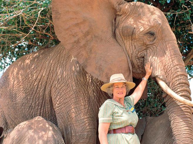 Daphne, la donna che adottava i piccoli elefanti orfani