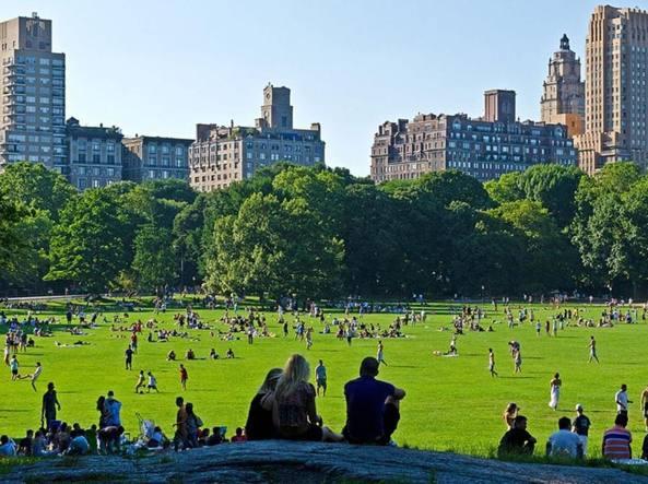 new york rivoluzione a central park stop alle auto dopo un secolo. Black Bedroom Furniture Sets. Home Design Ideas
