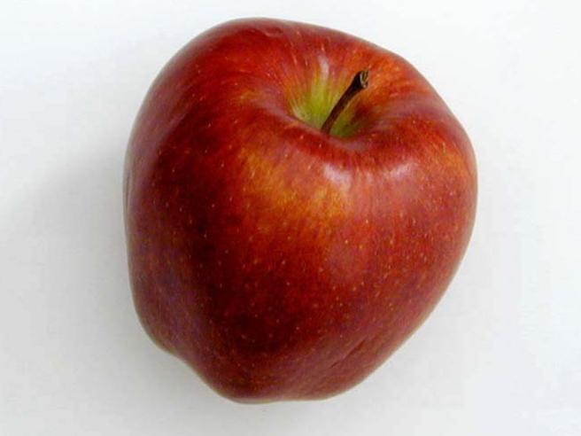 Usa, non dichiara mela in borsa: 500 dollari    di multa in aeroporto