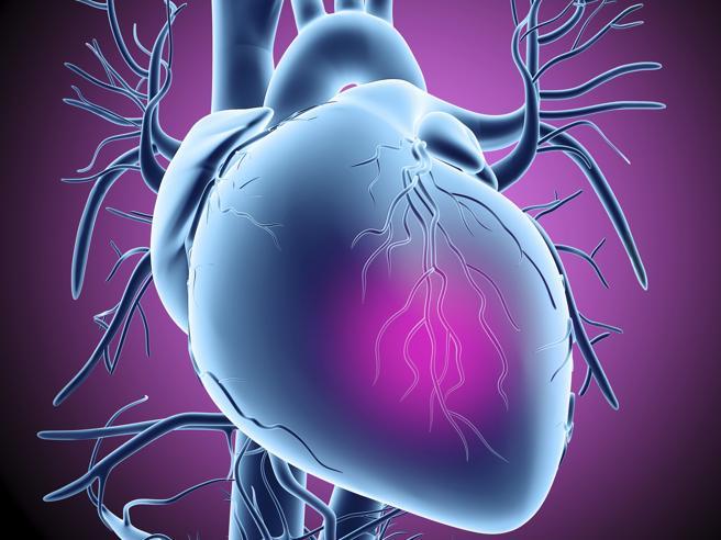 L'infiammazionedel cuore: cos'è la miocardite, i sintomie come si cura