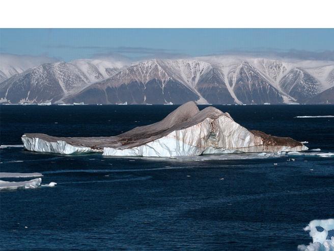 L'Artico è pieno di microplastiche: 12.000 particelle per litro Foto