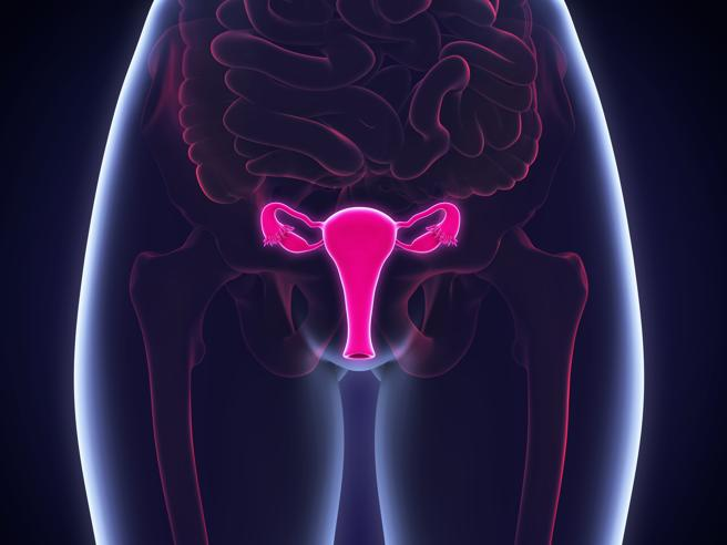 Fibromi uterini, come ci si può accorgere della loro presenza?