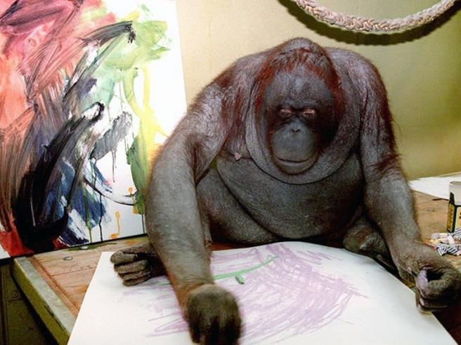 Addio a Nonja, la scimmia pittrice con un profilo su Facebook