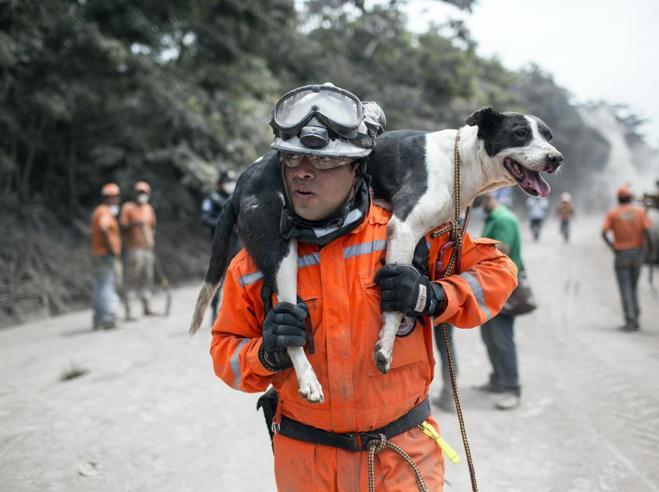 Guatemala, eruzione del vulcano Fuego: 200 dispersi, 75 vittime