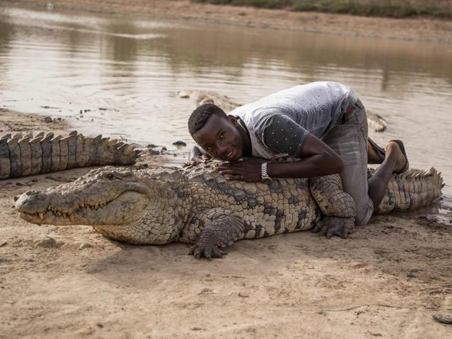 Sul dorso del coccodrillo sacro: così si attirano i turisti - Le foto