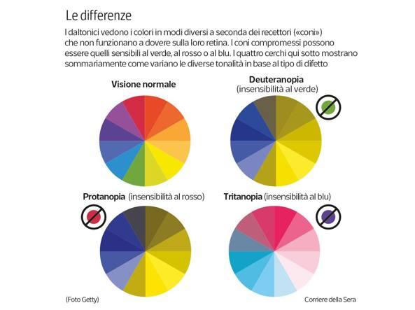 Occhiali per daltonici | Ottica Lovati - Occhiali per ...