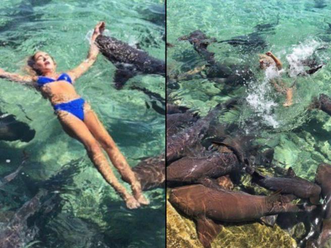 Lo squalo morde la modella che cerca la foto perfetta per Instagram