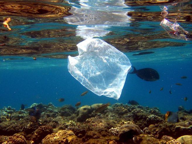 A caccia di plastica nel Mediterraneo: i risultati della ZIRÀ Expedition di Marevivo