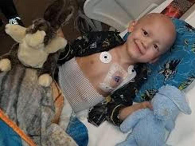 Garrett e il necrologio a 5 anni: «Siate allegri, rinascerò gorilla»