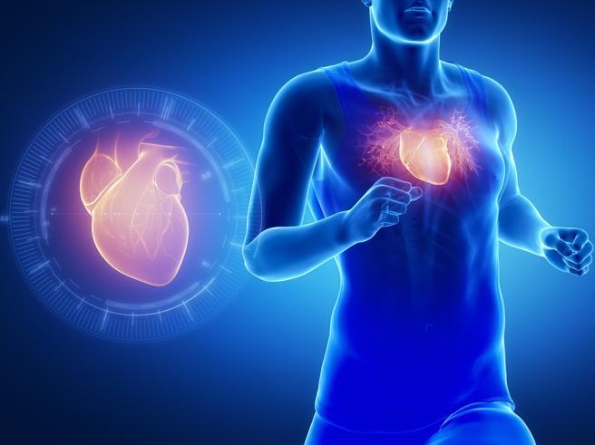 Salute del cuore e vasi: i nostri esperti rispondono ai vostri dubbi sul forum