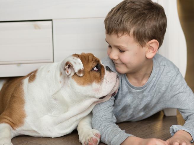 Come nasce il potere dei cani di proteggere i  bimbi   dalle allergie