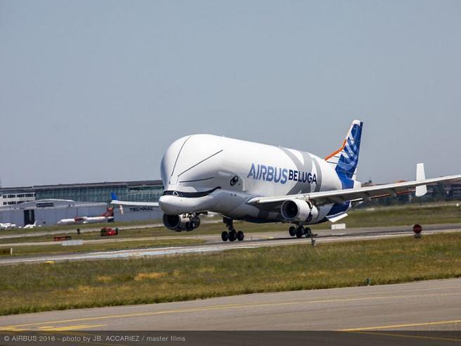 C'è un beluga nei cieli:  primo volo test per l'Airbus XL  Foto|Video
