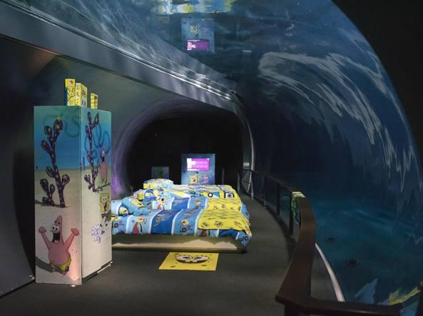 Una Camera Da Letto Da Sogno : Sera cena notte colazione un sogno per pochi all acquario di