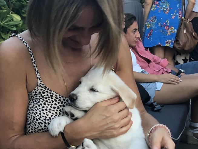Lara, la cucciola nata dal cane sepolto vivo. «L'abbiamo adottata, vuole dormire attaccata al cuore»