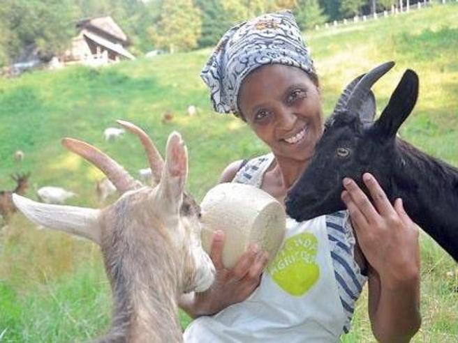 "Minacce razziste contro  Agitu, allevatrice etiope in Trentino: ""Brutta n..."""