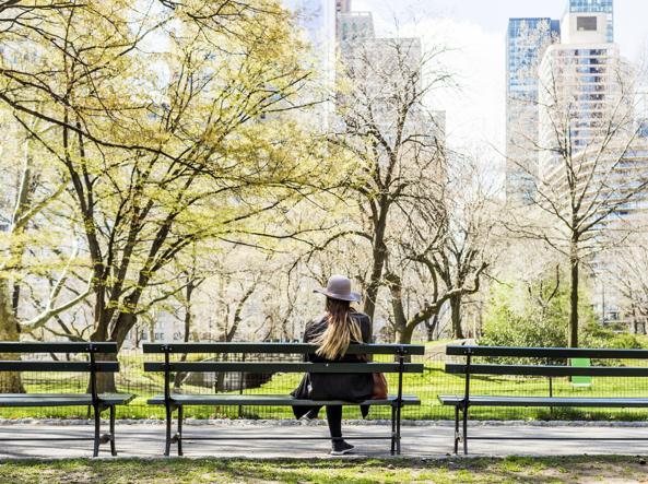 Panchina Con Lampioni Seduti : Lampioni stradali nel parco u video stock lponline
