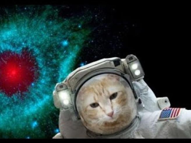 Un selfie tra le stelle con l'app di Nasa