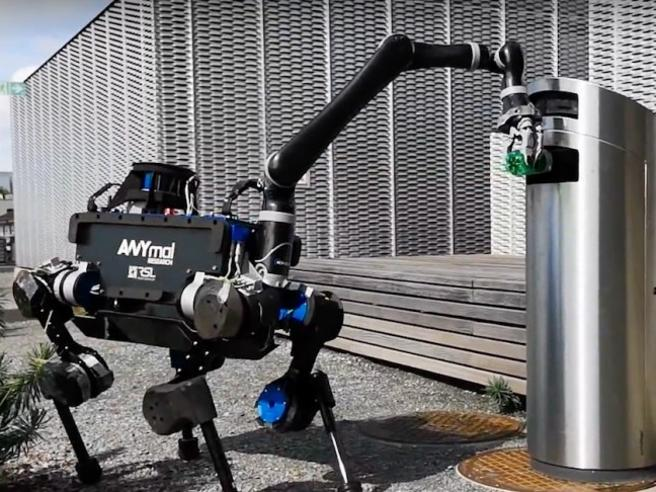 Alma, il cane-robot che arriva dalla Svizzera: solleva i bicchieri d'acqua e butta via i rifiuti