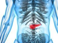 Tumore al pancreas: caccia al big killer con le armi della ricerca